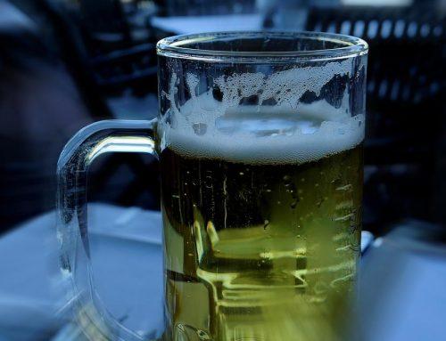 Bicibirra: Una despedida original con cerveza libre en Málaga